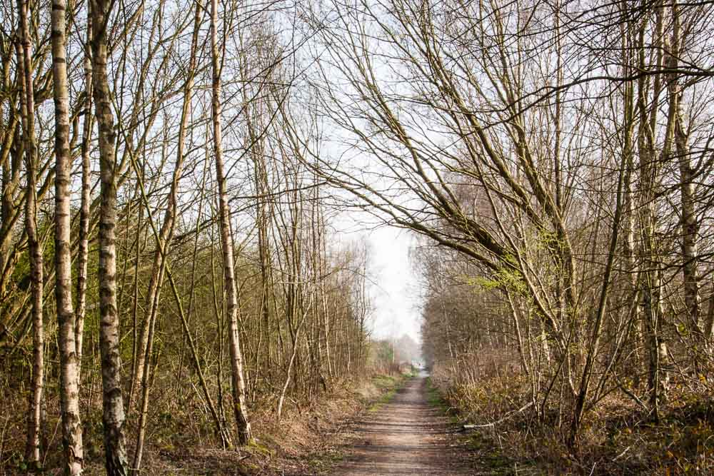 The walk from Newstead to Linby is partly on former railway line